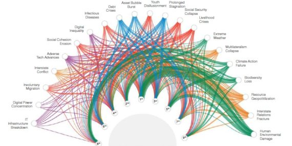 global risks network